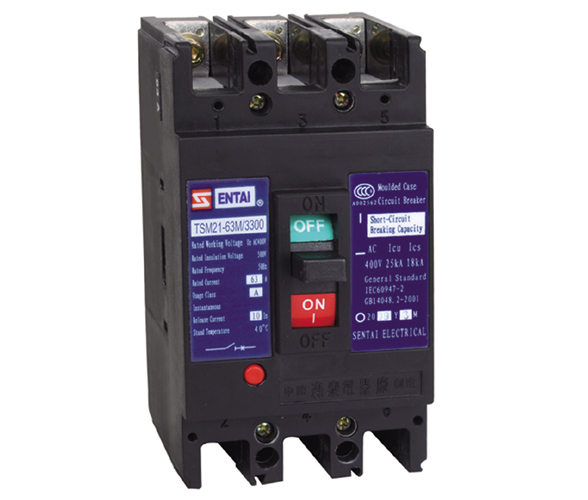 TSM21 series moulded case circuit breaker manufacturers from china