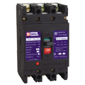 TSM21-100 Series Moulded Case Circuit Breaker