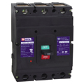 TSM21-800 Series Moulded Case Circuit Breaker
